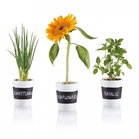 3 Pots à herbes publicitaires